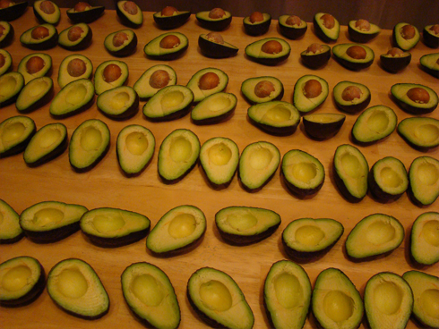 35 avocados on a table